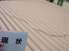 屋根塗装工事 (折半屋根)